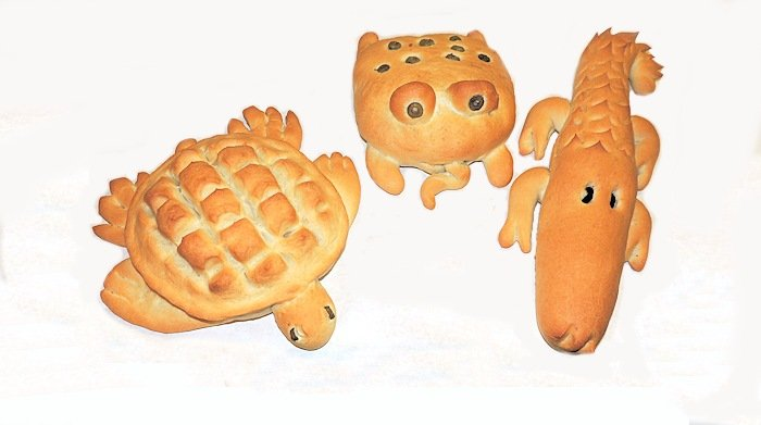 cudiKtFbTKmbsIj3cAY6_0_Gator_Turtle_Frog_Bread700x391