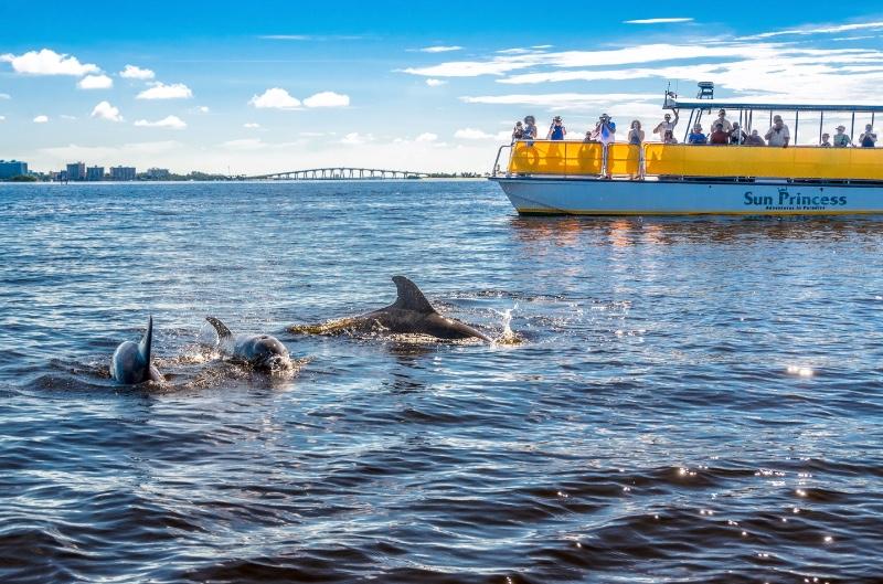 fort-myers-beach-dolphin-tour-main